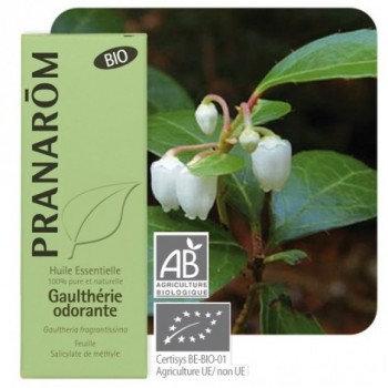 Gaulthérie odorante Pranarom