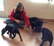 Lilian Fukuda dog behavior expert