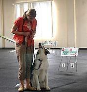 Lilian Fukuda; dog traning; dog behavior