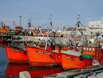 Nuevo fondo de ACRES SAFI financió S/ 11.7 millones a 10 años a empresa en sector pesquero
