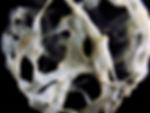 Web_DS4307_TEST_FA13_LOPE_KIM_CAVE_ BRAN