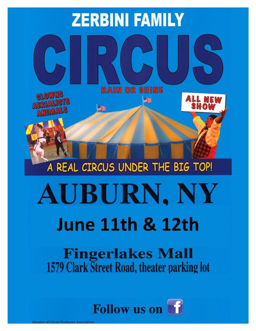 Zerbini Circus