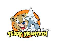teddy mountain.jpg