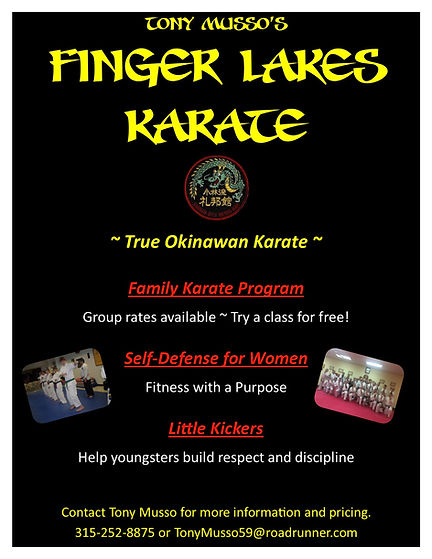 Finger Lakes Karate flyer.jpg
