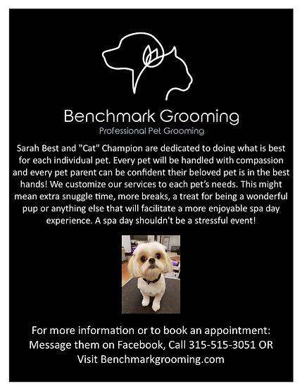 Benchmark Grooming flyer.jpg