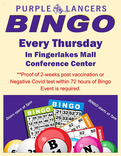 new bingo flyer.jpg