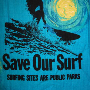 Save Our Surf.jpg