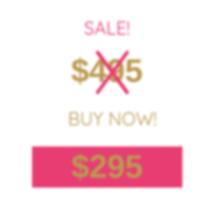 sale $295.png
