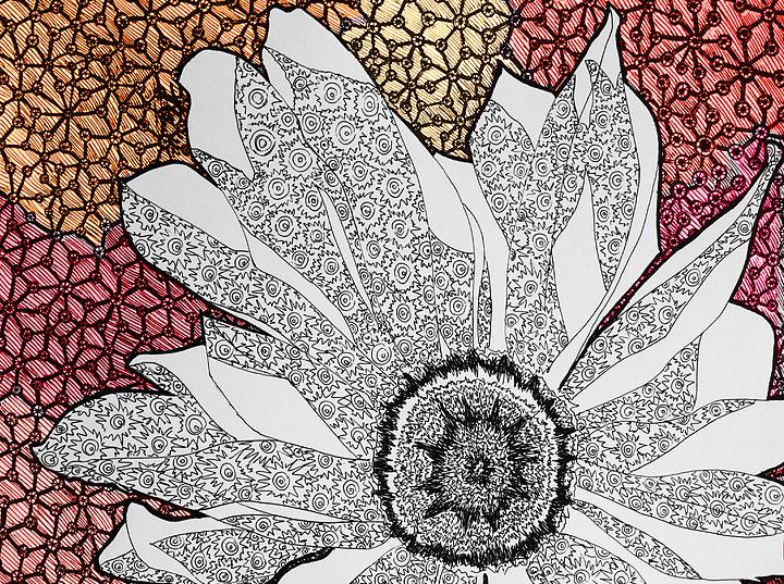 Blossoming - Digital Illustration Print