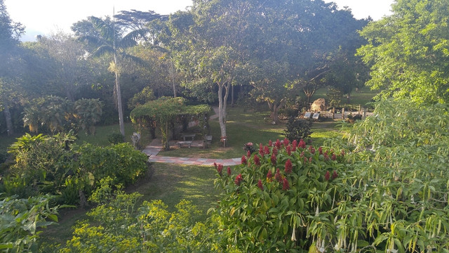 Why I Loved Hotel Bougainvillea