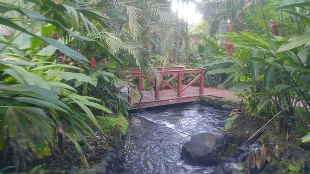 The Pros and Cons of an Arenal Day Tour