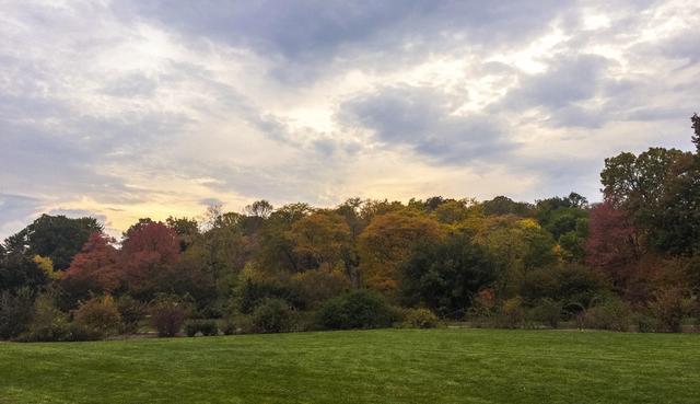 An Ode to Autumn