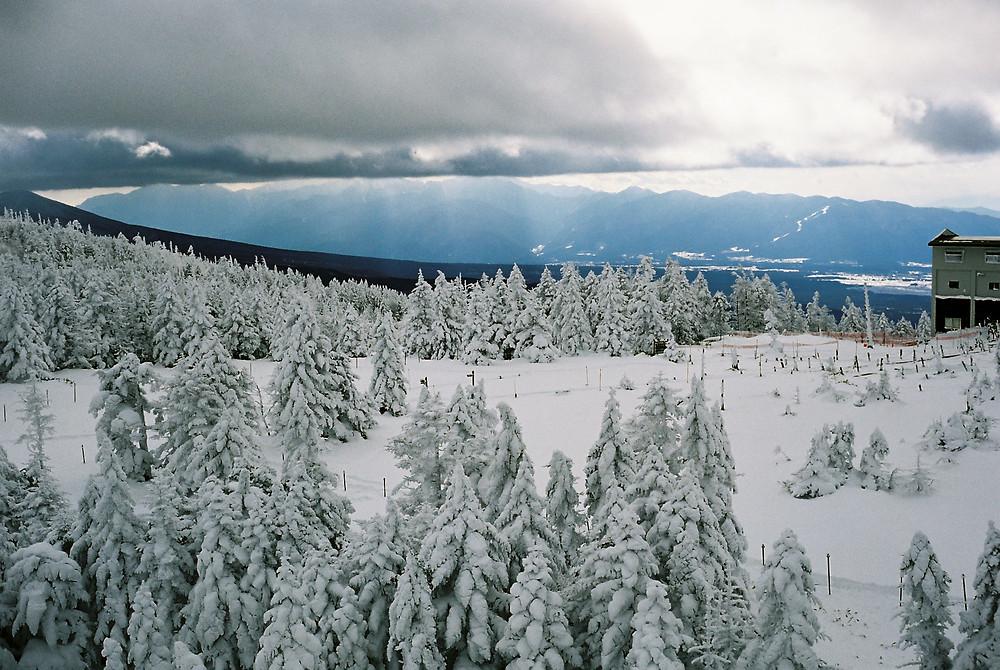 January Wanderlust Destination: Nagano, Japan