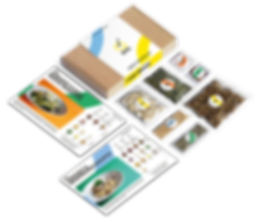 BUG_Letterbox_Sleeve_Ingedeints_Export.p