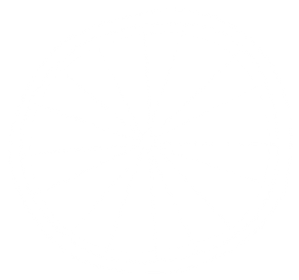TDM_Background_Wheel_White_10.png