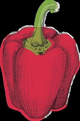 Hi Five_Uplaod_Illustration_Pepper_Red.p