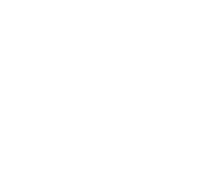 TDM_Background_Wheel_White_50.png