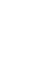 TDM_Fork.png