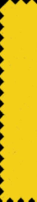 CJ_Website_Pattern_Yellow_2.png