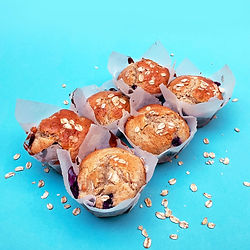 MEALWORM BLUEBERRY MUFFINS
