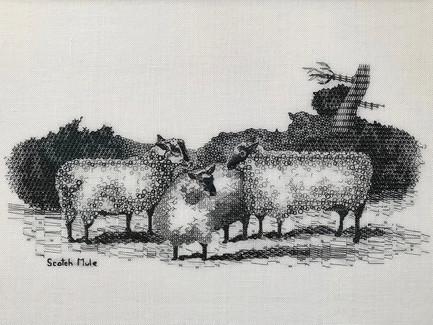 Scotch Mule | Blackwork