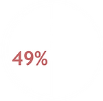 49% das organizações possuem programas de formação em Gestão de Projetos.