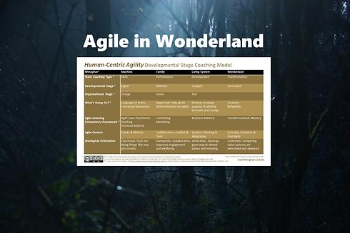 Agile in Wonderland full v3.png