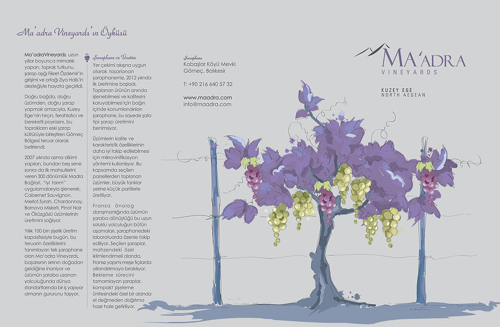 Maadra Brochure Cover