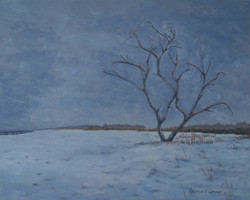 December Snow on Grandview