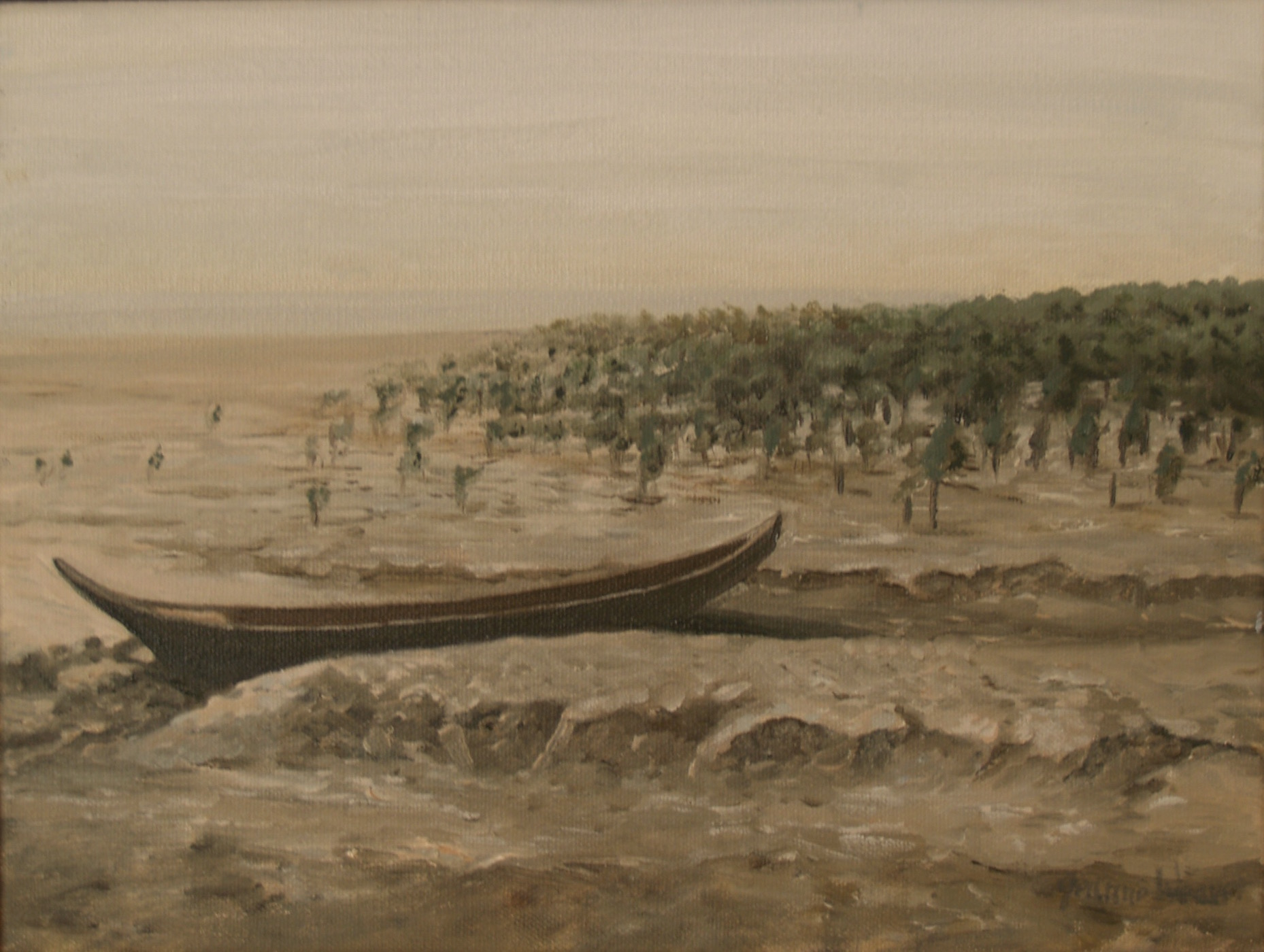 Mangroves and Mudflats