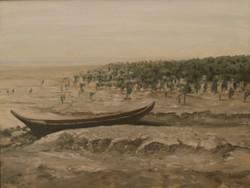 Mangroves and Mudflats