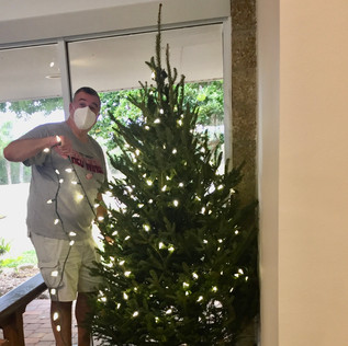 Skip LaPoint light a live tree--It smells so good!