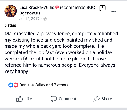 willis review.png