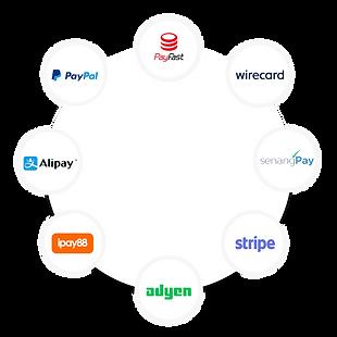 Payment Gateway copy.png