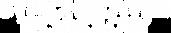 Synchroweb-Logo-White.png