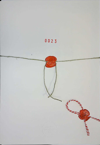 MSN 0023
