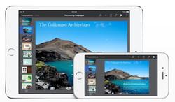 iPad & iPhone 5S
