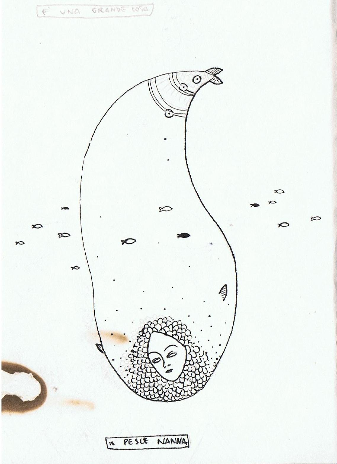 Pesce nanna