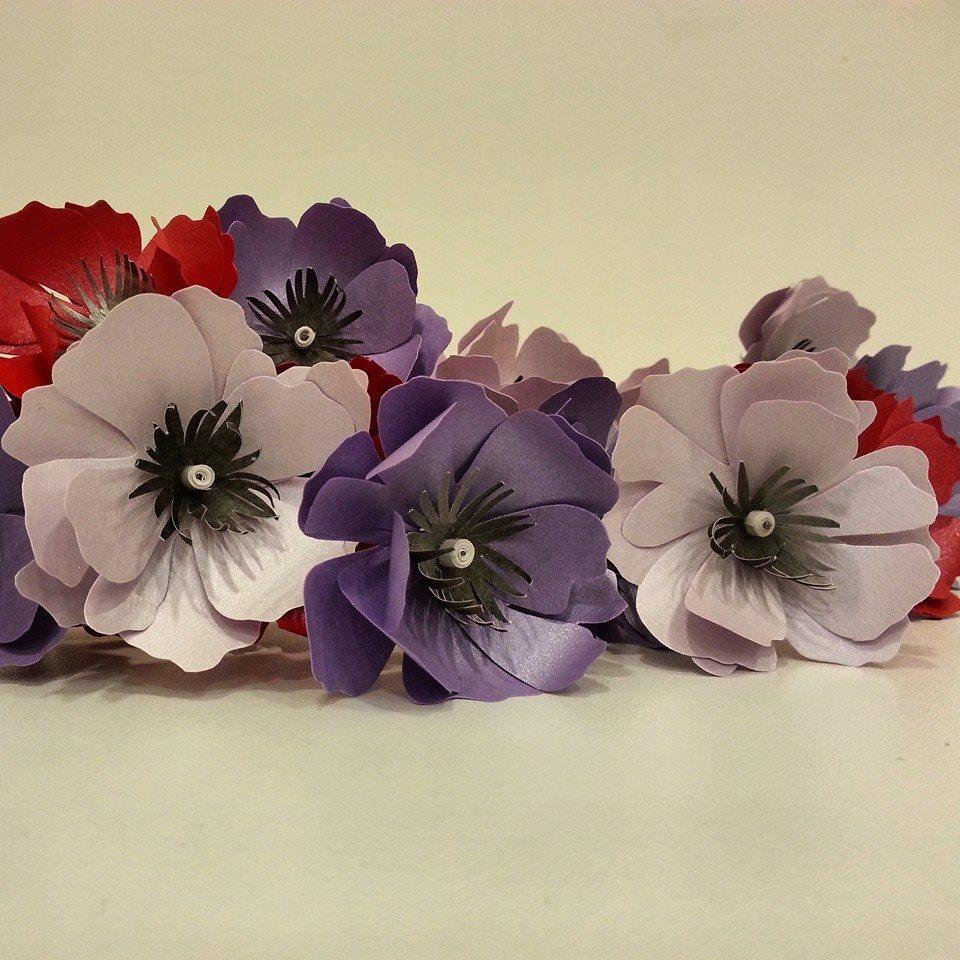 paper anemone