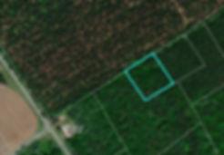 Aerial - York Rd..JPG