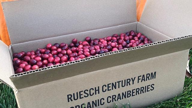 10 pound box of cranberries
