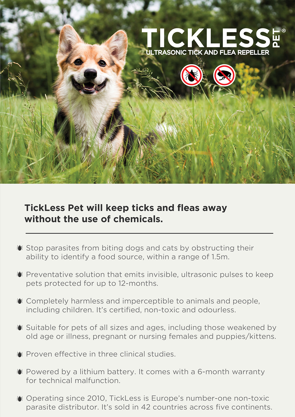 New Chemical Free Tick And Flea Protection