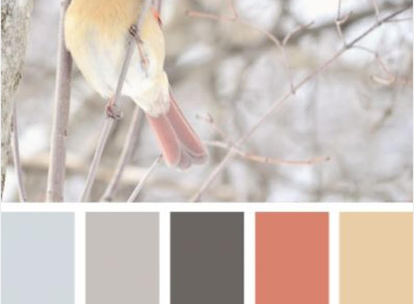Color Envy