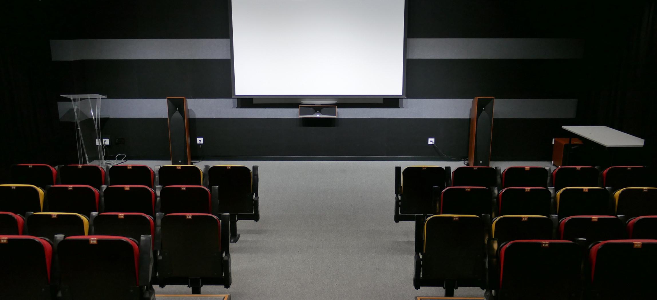 cinema standard