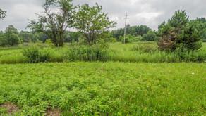 Vacant Land, M89 Richland, MI 49083