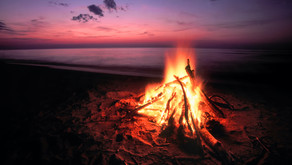 2020 Virtual Summer Camps