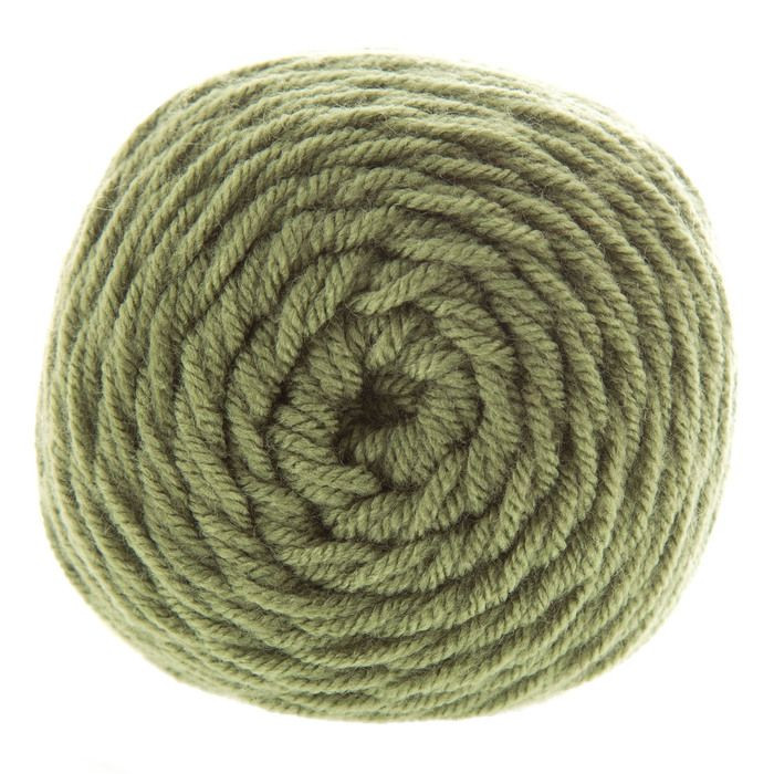 I Love This Yarn in the color Light Sage