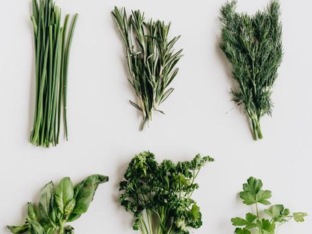 Le pouvoir des herbes aromatiques