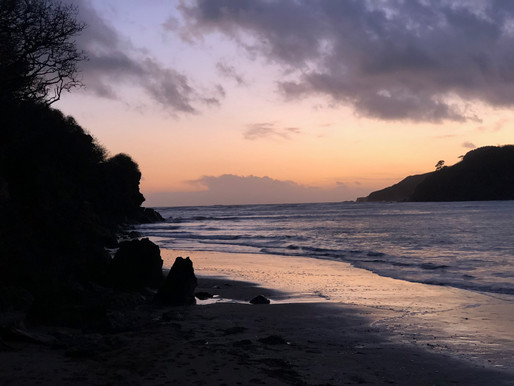 Grab the kids, bring the dog and enjoy some walks in and around Dartmouth this half term