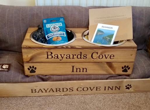 Why we love dogs at Bayards Cove Inn